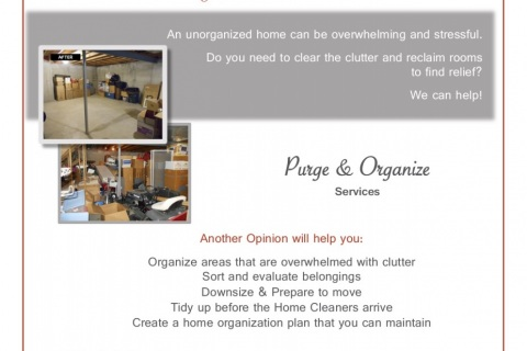 Another-Opinion-Purge-Organize-Handout.pdf-copy